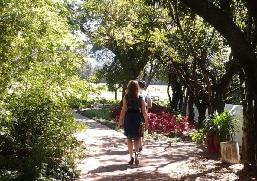 nederburg-wine-estate-gardens