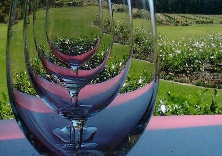 nederburg-wine-tasting