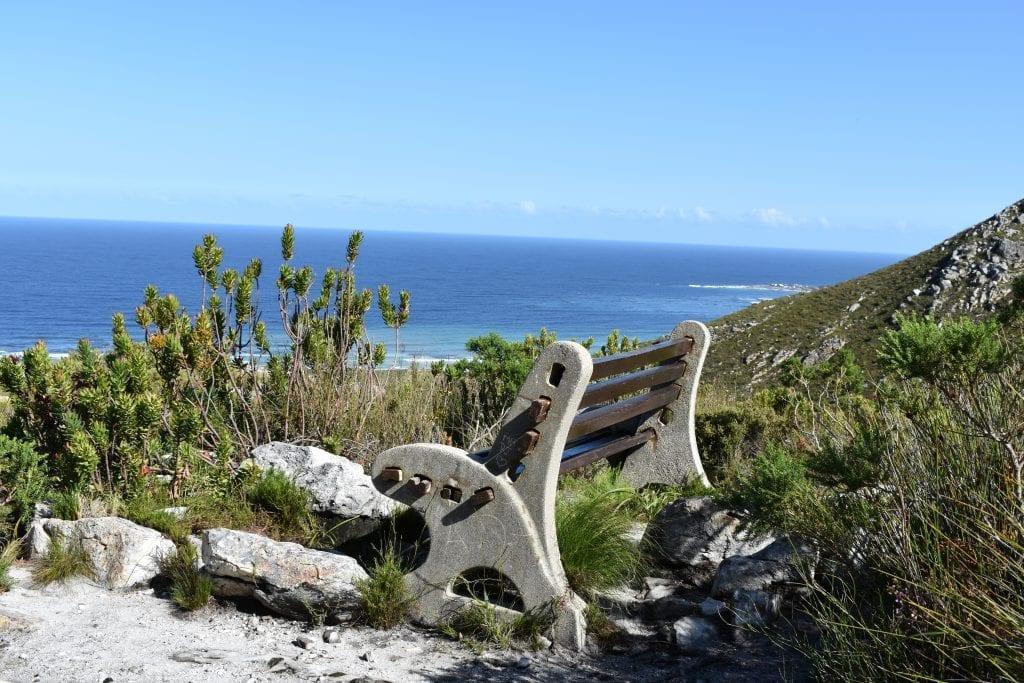 harold-porter-hikes-bench