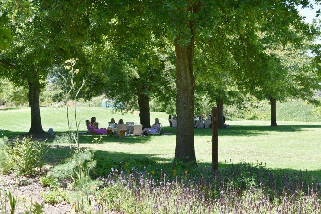 stellenbosch-picnic-spots