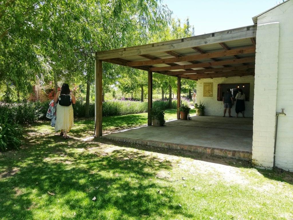 alicia-chamaille-online-tamlyn-amber-wanderlust-stellenbosch