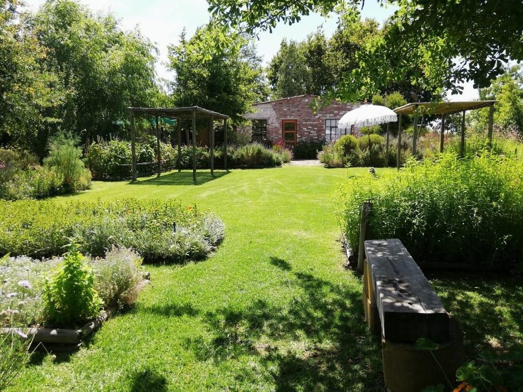 veggie-garden-stellenbosch