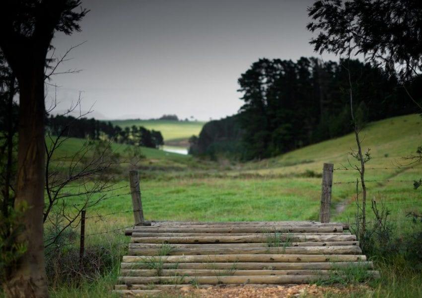 oak-valley-estate-mtb-trails