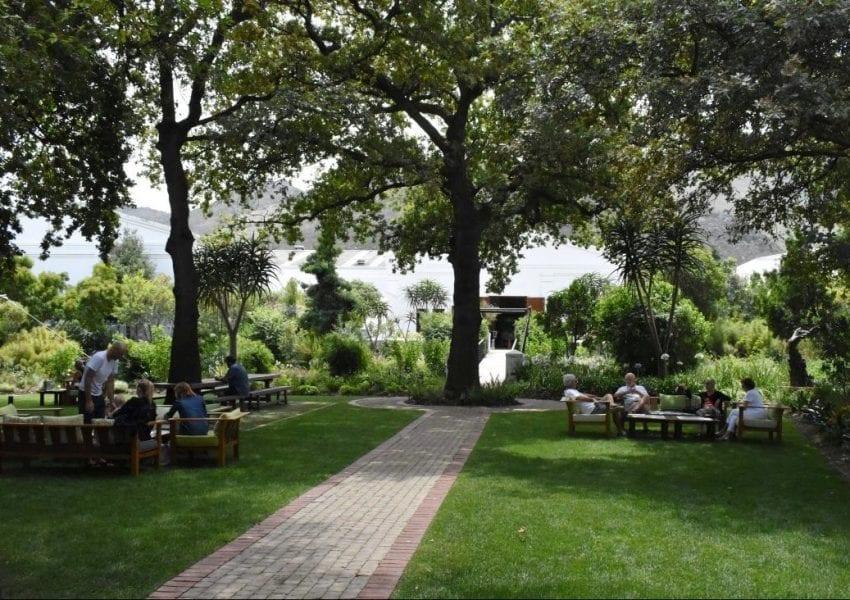 la-motte-gardens-franschhoek