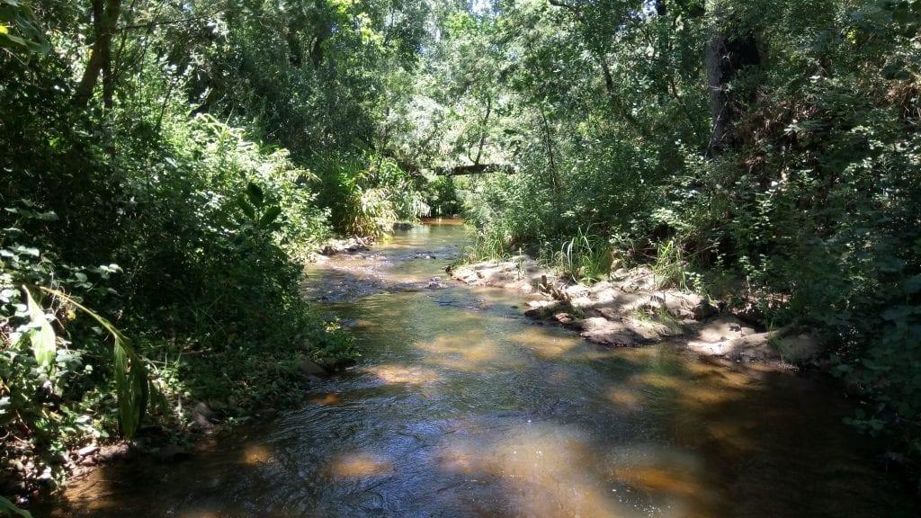kromme-river-wellington