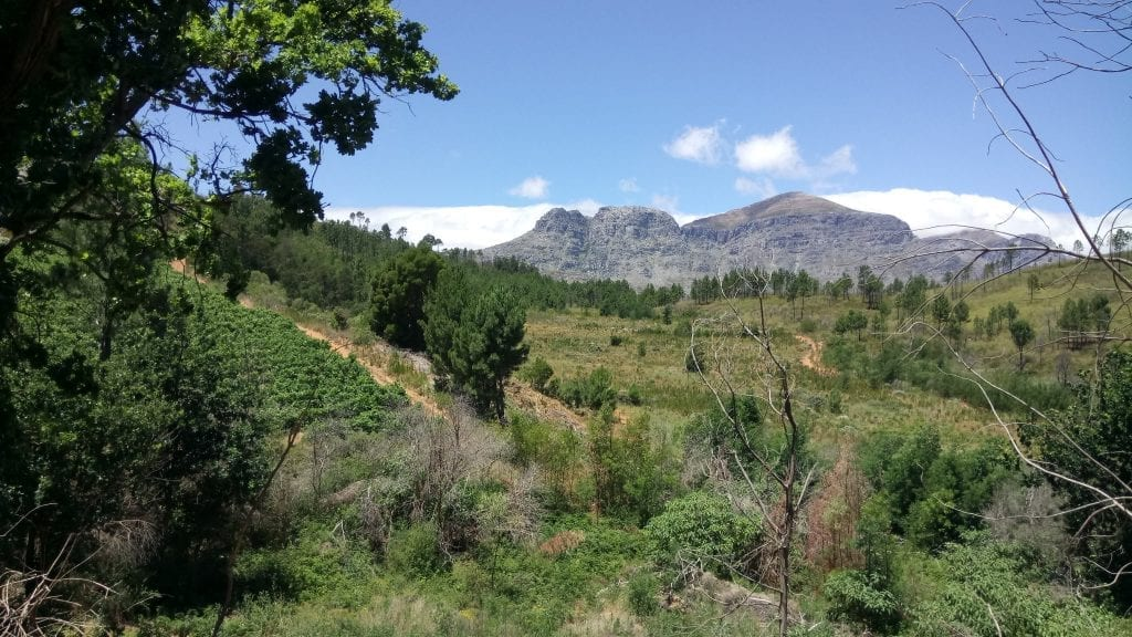 welvanpas-hiking-trail-best-western-cape-day-hikes