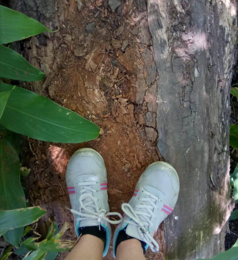 hiking-takkies