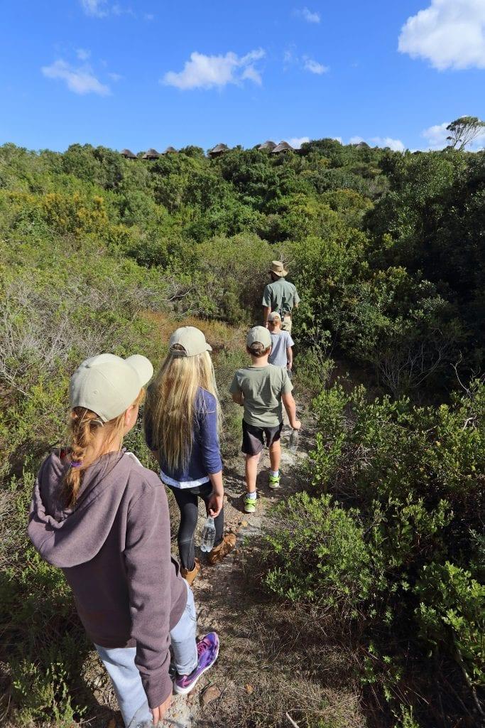 kids-activities-wildlife-experiences
