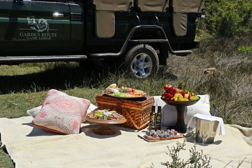 picnics-garden-route
