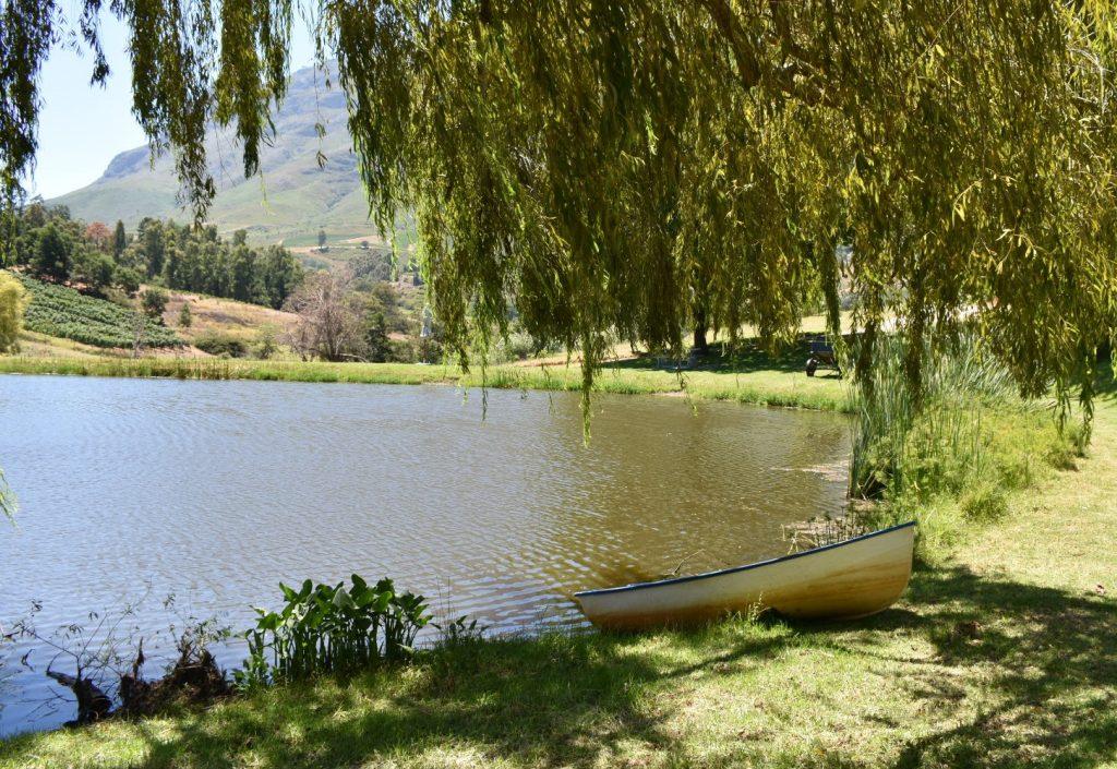 great-picnics-lunches-cape-winelands-western-cape-alluvia