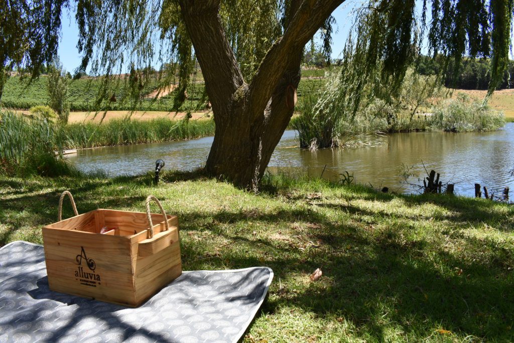 vegetarian-picnic-alluvia-boutique-winery