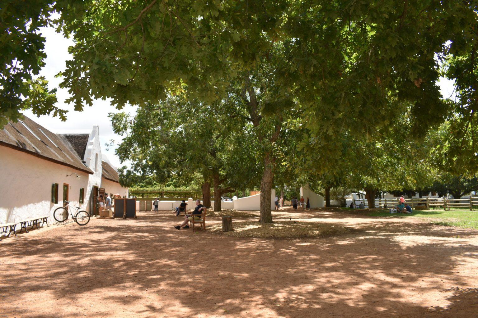 babylonstoren-wine-estate