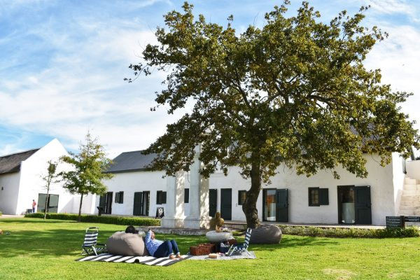 hazendal-wine-estate-picnics