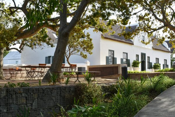 stellenbosch-wine-routes-50-years