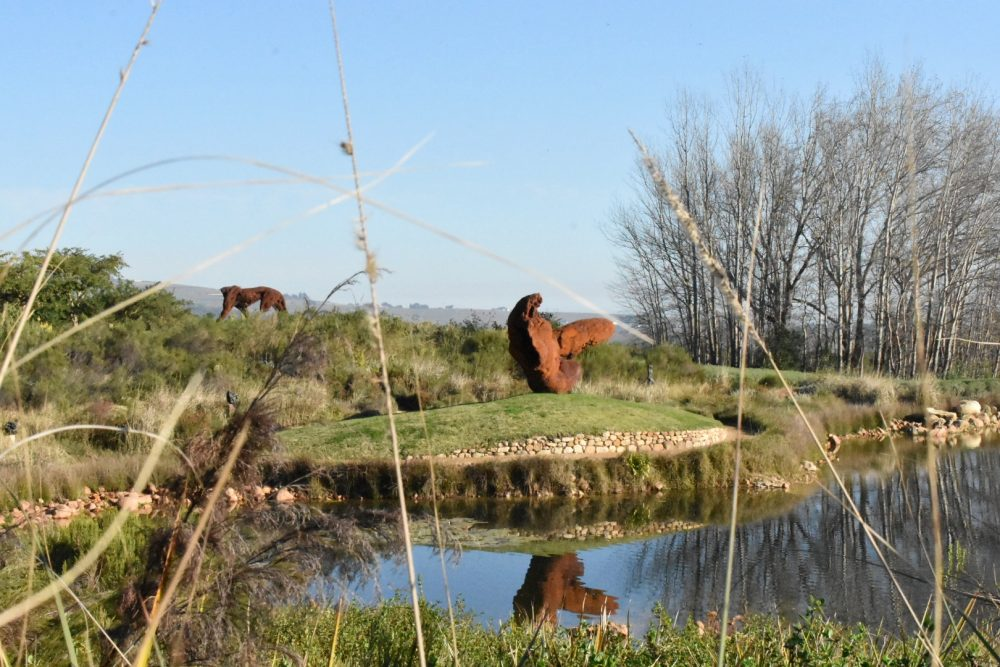 gardens-to-explore-year-round-near-the-cape-winelands-dylan-lewis-sculpture-garden