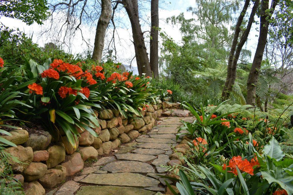 tokara-estate-gardens