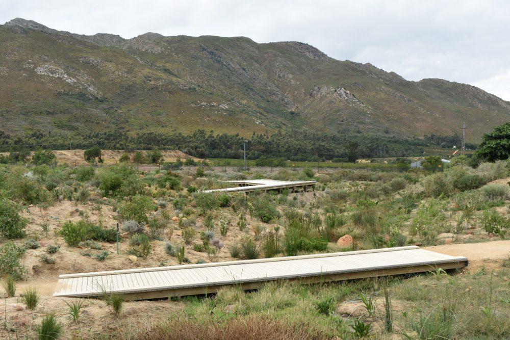 gardens-to-explore-year-round-near-the-cape-winelands-bosjes-gardens
