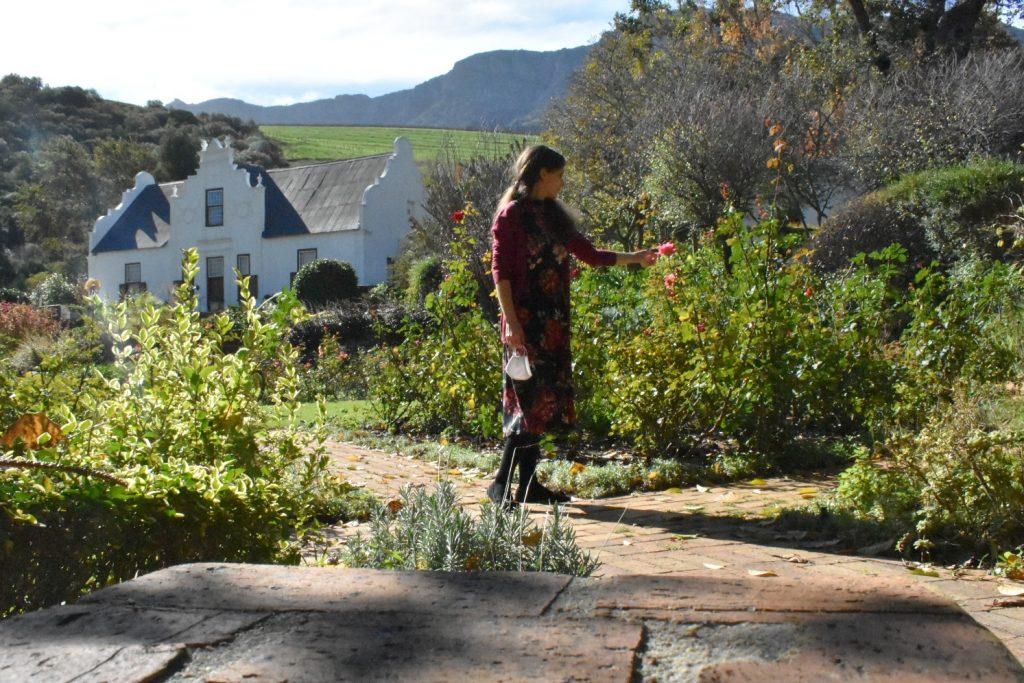 rose-garden-tamlyn-amber-wanderlust