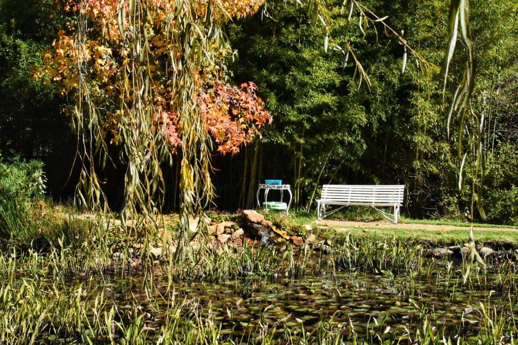 stellenbosch-gardens