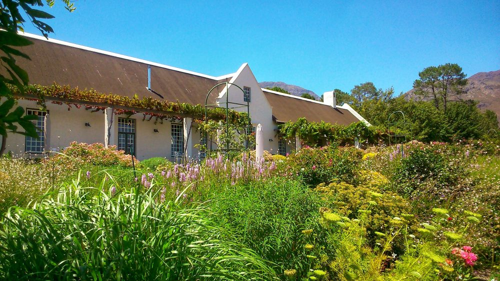 gardens-to-explore-year-round-near-the-cape-winelands-avondale-wine