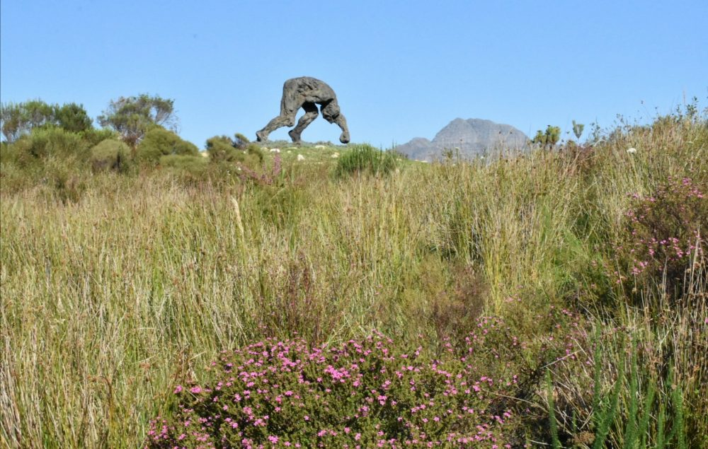 fun-things-to-do-for-spring-western-cape-dylan-lewis-sculpture-garden