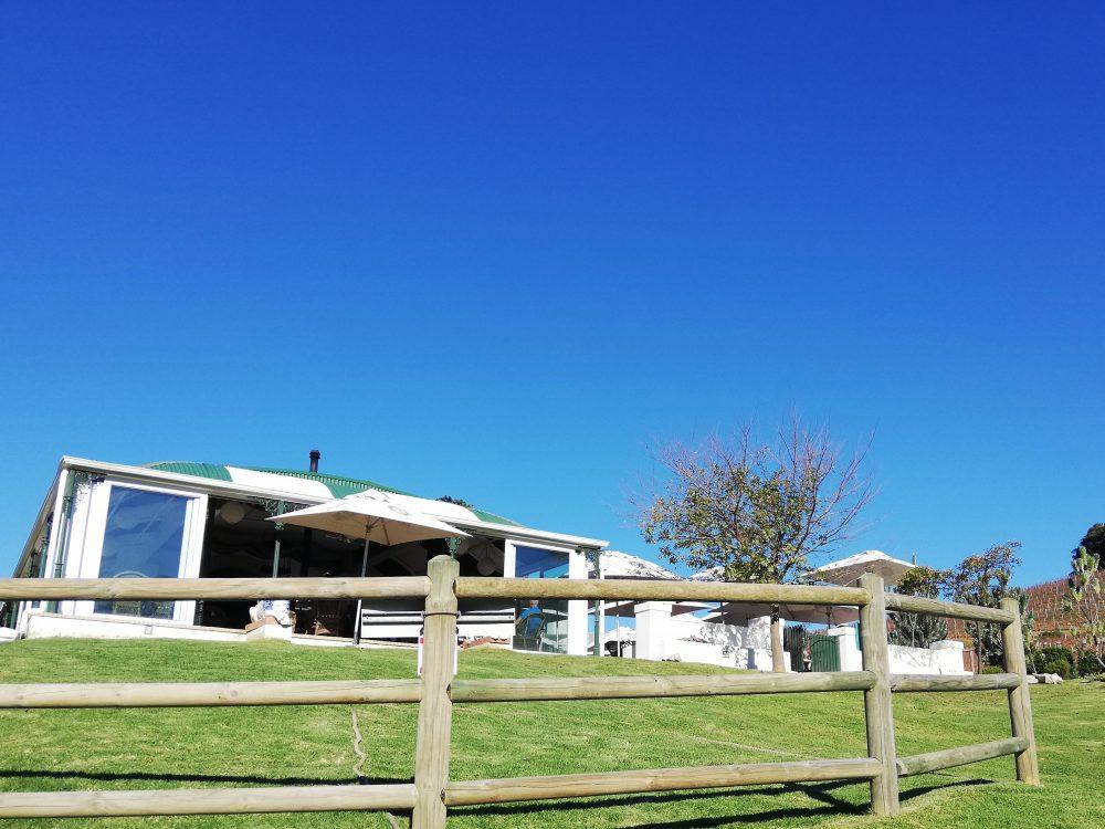 wine-farm-views