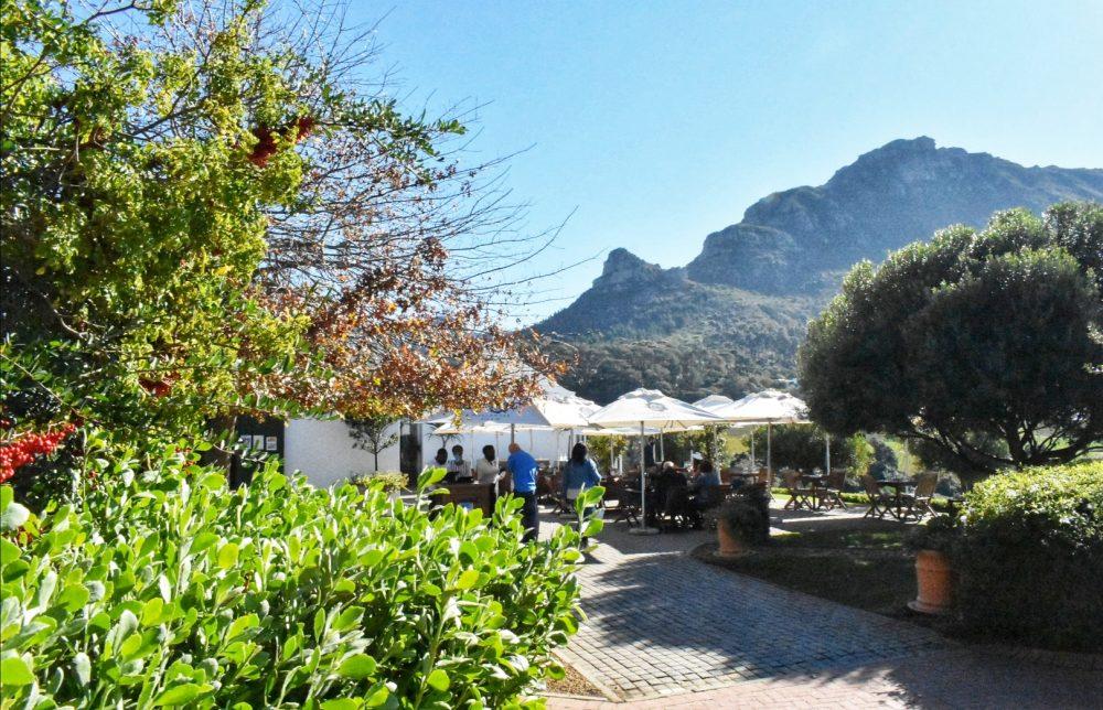 wine-tasting-area