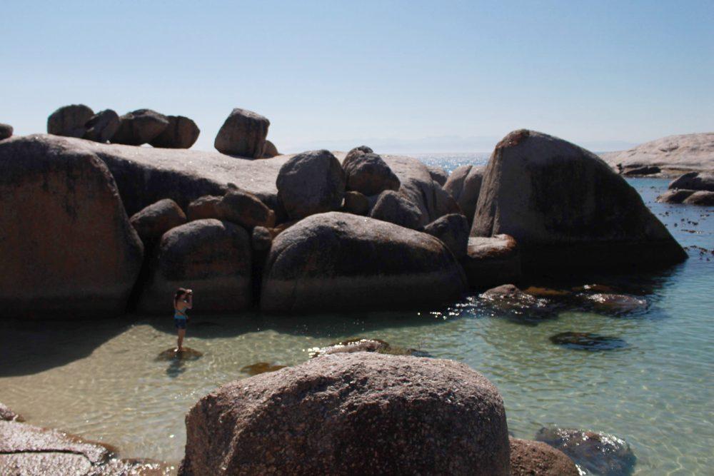 boulders-beach-swimming