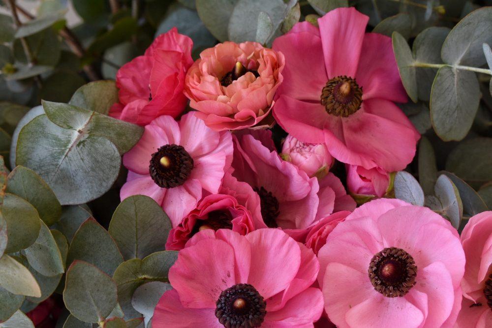joostenberg-flowers