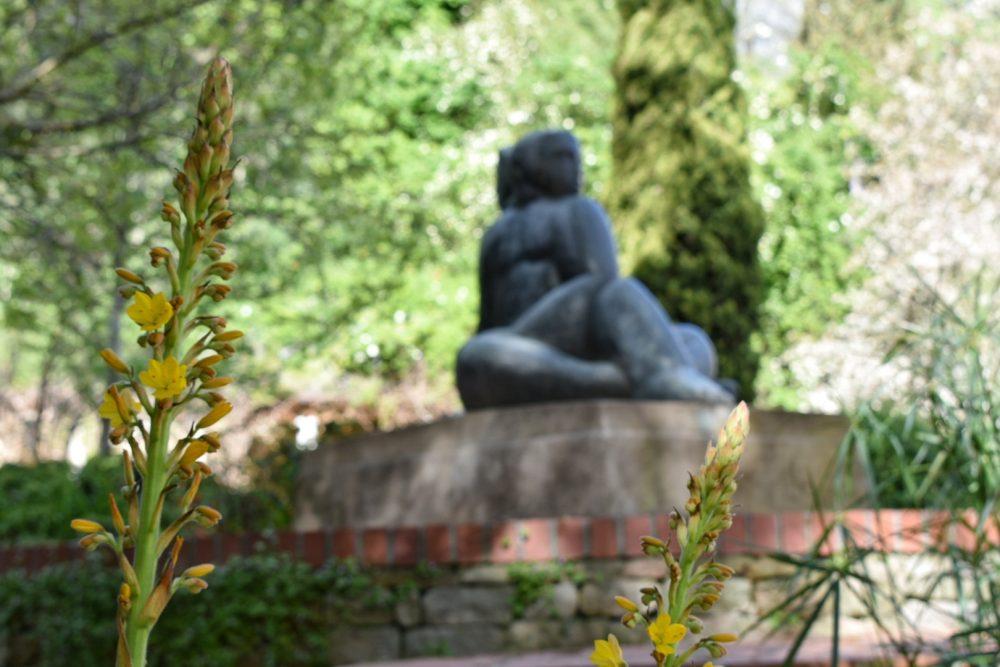 lily-pond-art