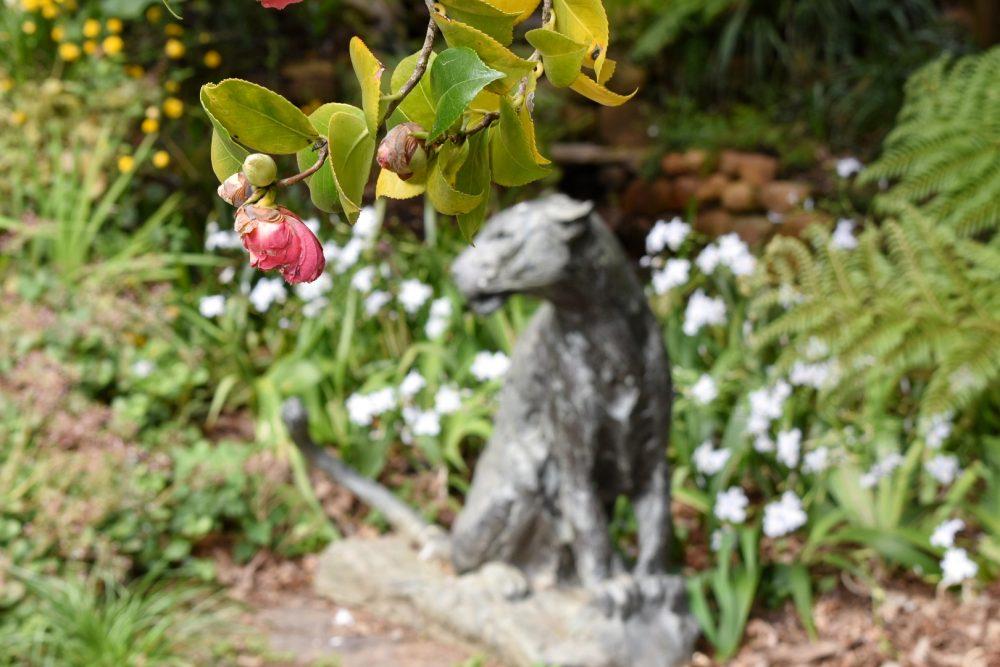 tokara-estate-stellenbosch-gardens